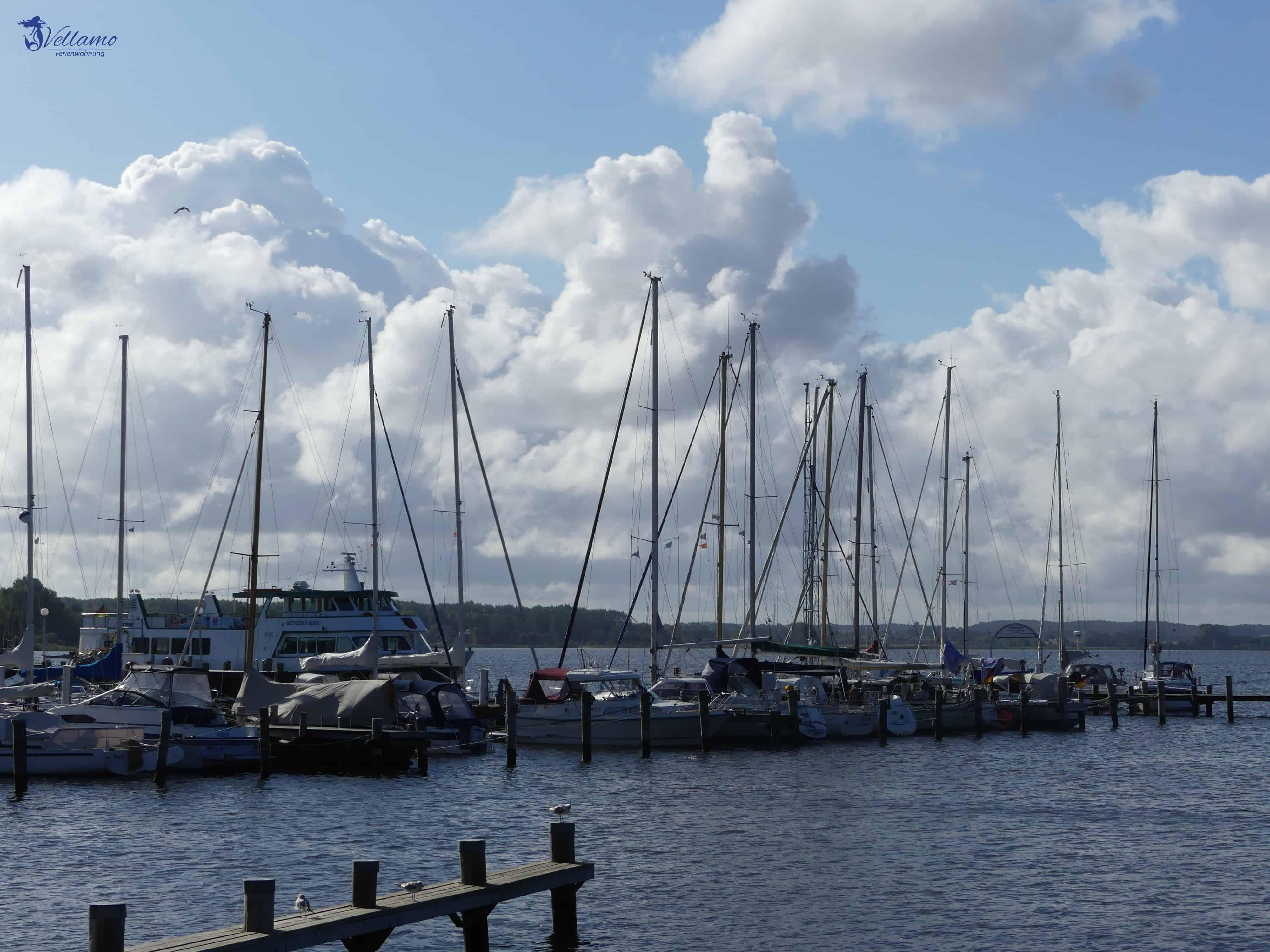 Ostseebad Rerik Bilder - Hafen Rerik