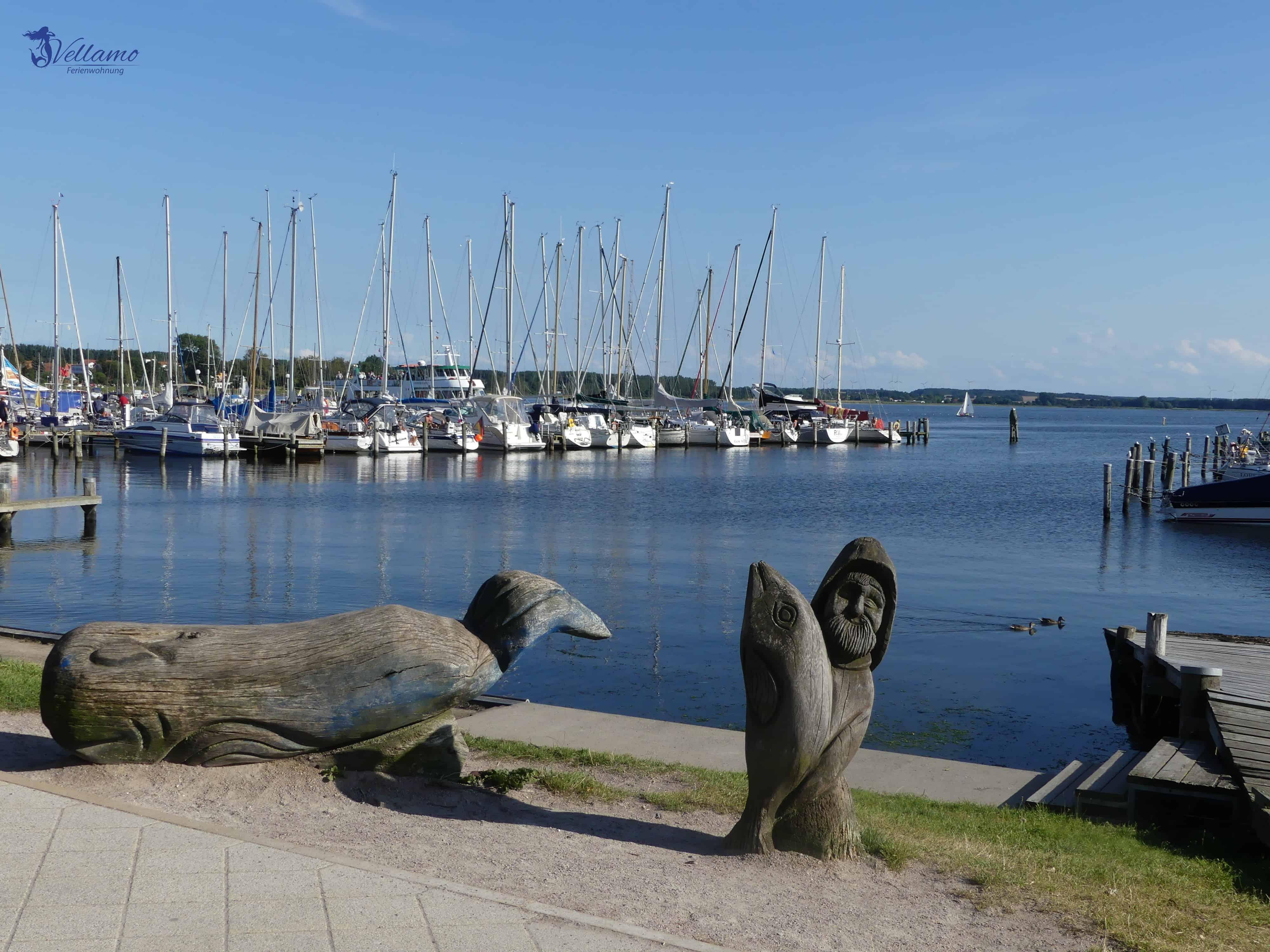 Ostseebad Rerik Bilder - Hafen von Rerik
