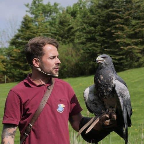 Ausflugstipps für Familien - Vogelpark Marlow
